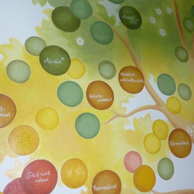 De tomma bollarna i trädet är till för kommande framgångar för Mirka i Karis.