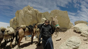 Pia Lehtinen red över anderna med mulor och hästar