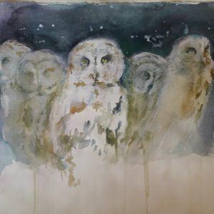 Pöllöjä rivissä. Minna Pyykön akvarelli.