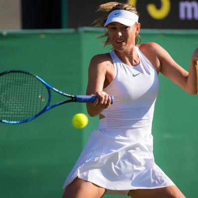 Marija Sjarapova i Wimbledon