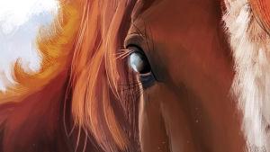 lähikuva hevosen silmästä, maalaus