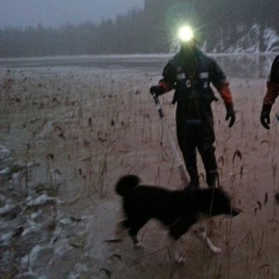 koira ja palomiehet jäällä