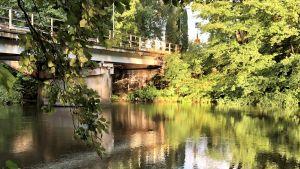 En bro över en å, sedd från en grönt buskage på en sidan. Bron ser rostig och sliten ut. Ingen trafik.
