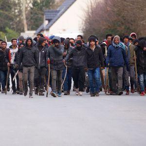 Ett gäng migranter bär på pinnar efter sammandrabbningar i Calais 1.2.2018.