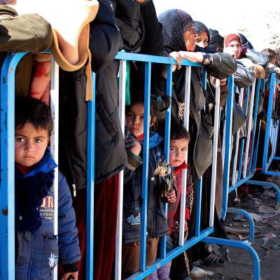 Syriska flyktingar köar för att registrera sig i byn Arsal i Libanon vid gränsen till Syrien.