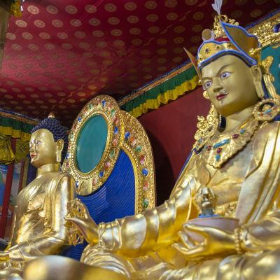Buddha-patsaita Dharma-keskus Danakoshassa.