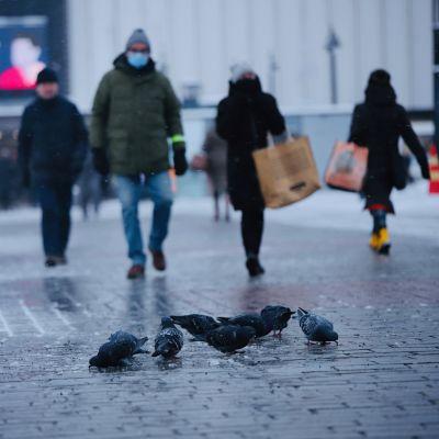 Ihmisiä kävelemässä ja puluja syömässä maassa Kuopion torilla talvella.
