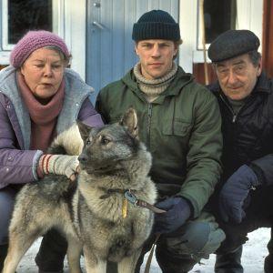 Leppävaaran tilalla Metsolan perhe valmistautuu joulun viettoon. Saadaanko koko perhe koolle?
