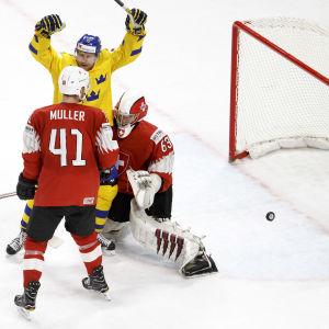 Patric Hörnqvist jublar efter Sveriges 1-1-mål i VM-finalen.