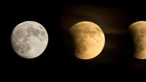 Täysikuu ja kuu eri vaiheissaan