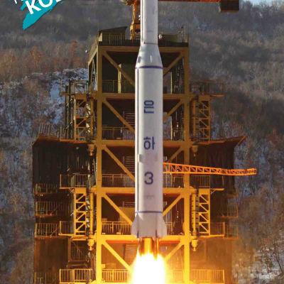 Nordkorea kritiseras för missiltest.