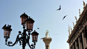 Näkymä Venetsiassa