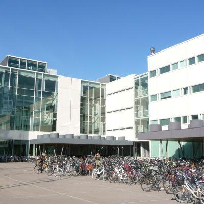 Educarium, Åbo universitet, 1.10.2014