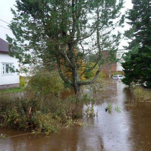 Översvämmad gård i Lappfjärds centrum.