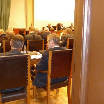 Vasa stadsfullmäktige