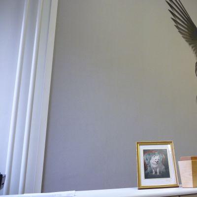Begravningsbyrå för smådjur i Vasa öppnar i oktober