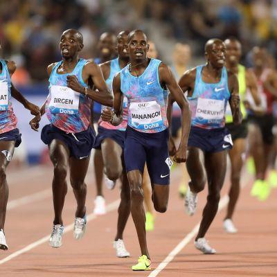 Kenialaisia Dohan miesten 1 500 metrillä.