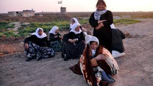 frigivna yazidiska kvinnor.