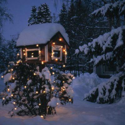 Julbelyst fågelbräde på snöig gård.