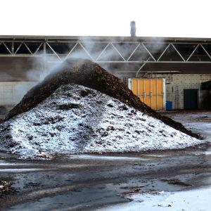 Lajiteltua biojätettä HSY Ämmässuon laitoksella.