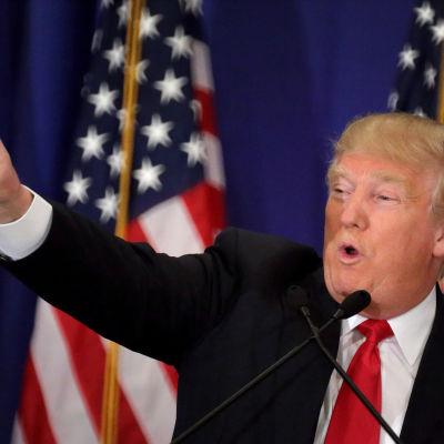 Trump håller tal i Florida den 8 mars 2016.