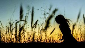 Lapsi juoksee niityllä