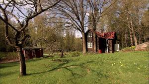 Suomen saariston kasvot muuttuvat, ehkä nopeammin kuin koskaan. Petteri Saarion dokumenttisarja kertoo kotimaamme saaristoista.