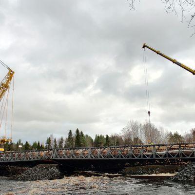Nostureita nelostiellä notkahtaneen sillan työmaalla Kiiminkijoella.
