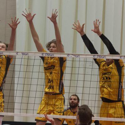 Savo Volley