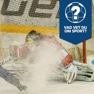 """Blåklädd hockeyspelare stannar upp framför målvakt och bjuder på en """"dusch"""" med skridskostoppet."""