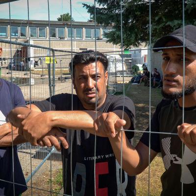 Hassan (vas.), Firas (keskellä) ja Abdi matkaan Irakista luettuaan Facebookista, että Valko-Venäjä avaa rajan Liettuaan.