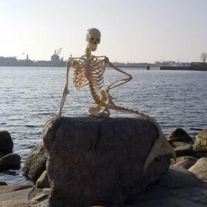 Ett konstruerat skelett av en sjöjungfru var ett uppmärksammat aprilskämt i Köpenhamn 2010.