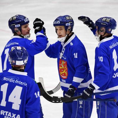 Finlands spelare firar mål
