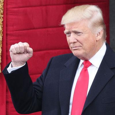 Ett porträtt av Donald Trump på hans installationsceremoni.