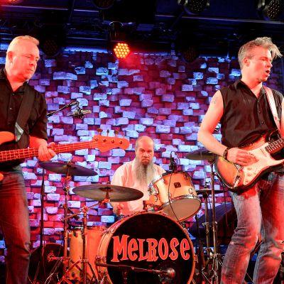 Melrose-yhtye keikalla