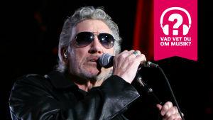 Roger Waters i mörka solglasögon vid mikrofonen under en föreställning av The Wall.