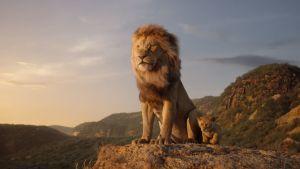 På bilden lejonkungen Mufasa och hans son Simba.