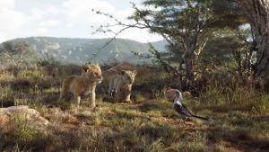 På bilden lejonungarna Simba och Nala tillsammans med fågeln Zazu.
