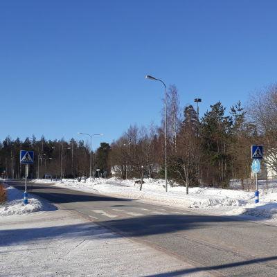 Väg med övergångsställe i vintrigt landskap.