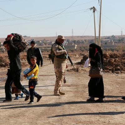 Civila försöker hitta en säker väg i Mosul bland irakiska styrkor, december 2016.