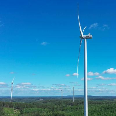 Fem vindkraftverk reser sig högt över trädtopparna en vacker dag med blå himmel.