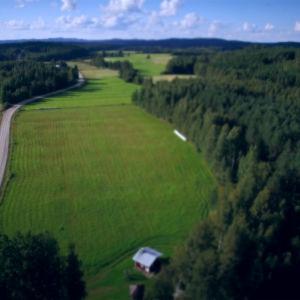 Maaseututie, vihreät pellot, sininen taivas.