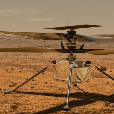 Minhelikoptern Ingenuity står på Mars yta.