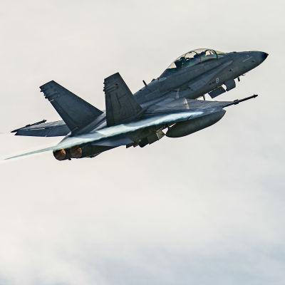 Ilmavoimien Hornet-hävittäjä nousee Pirkkalan lentokentältä.