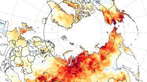 NASA-karta över värmebölja i Sibirien 19-20.6.2020