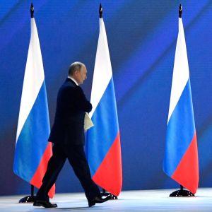 Vladimir Putin iklädd svart kostym går framför en rad med fyra ryska flaggor.