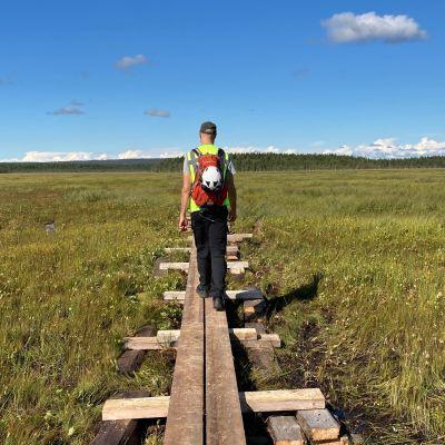 Mies kävelee uusilla pitkospuilla keskellä aapasuota. Taivas on lähes pilvetön, taustalla näkyy metsää.