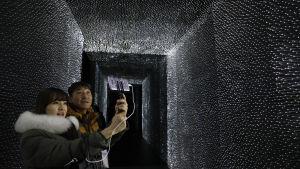 Vantablack kolsvart material i OS-paviljong i  Pyong Chang