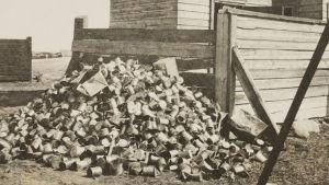 Konservburkar på Sveaborg 1918