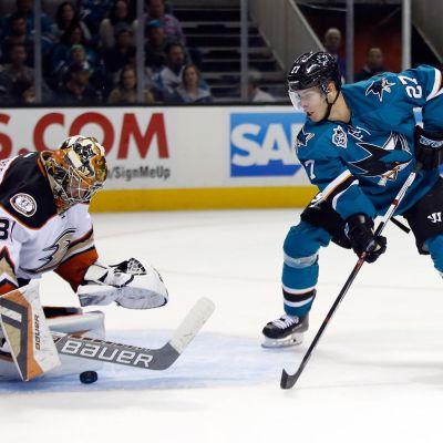 Joonas Donskoi i San Jose Sharks.